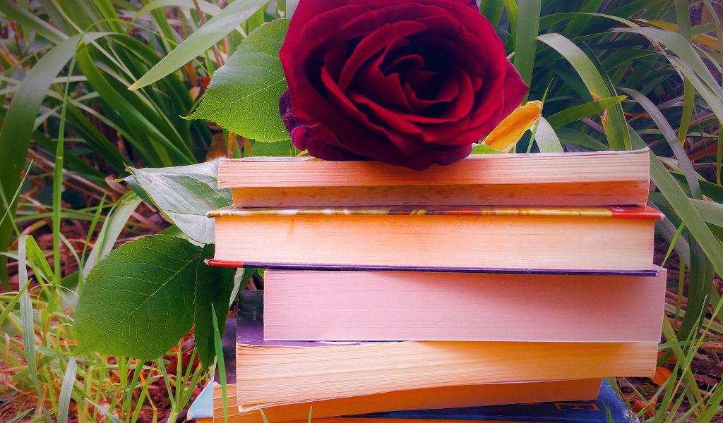 Perché leggo romanzi rosa?