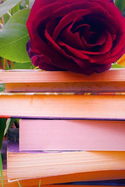 Romanzi Rosa 1